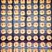 67365 Chinese lanterns
