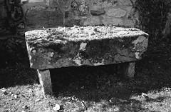 Mossy Seat (Man with Red Eyes) Tags: trix kodak hc110 160 115mins v850 leicam2 summicron35mmf2 iv v4 analog blackwhite monochrome silverhalide sunnysixteen northumberland northumbria ingram cheviots stone bench seat