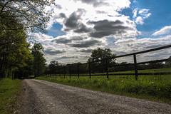 Le Gers (Nicolas4065) Tags: gers midipyrénées occitanie cloture centre equestre harras route road prairie wood arbres bois forêt nuages ciel bleu bluesky france europe sudouest campagne