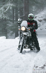 Himalayan in the Himalayas 2 (touragrapher) Tags: 70200 canon70200 canon70d dharali harshil heroimpulse himalayas himalyan offroader royalenfield sigma30mm snow snowstorm2017 snowstorm uttarkhashi uttrakhand uttrakhandtourism whereeaglesdare remotestcorners tourer