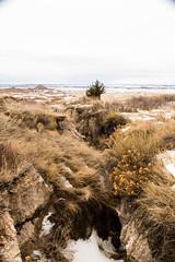 cliff shelf trail (almostsummersky) Tags: grass hike winter overlook nationalpark cliffshelftrail southdakota badlands prairie rockformation snow trail cliffshelfnaturetrail gulch badlandsnationalpark ridge gully rocks interior unitedstates us