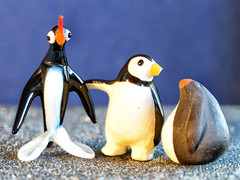 Glaze: Friends (Silke Klimesch) Tags: macromonday glaze hmm mm penguins figurines glass pottery ceramic closeup makrofotografie nahaufnahme olympus omd em5 mzuikodigitaled60mm128macro microfourthirds