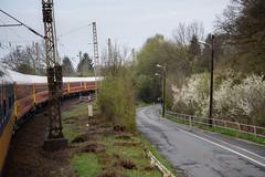 Am Bornumer Holz (grapfapan) Tags: train spring past travel germany hannover railways