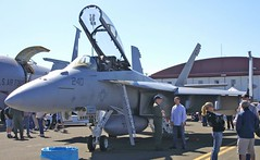 "F-18F Super Hornet 1 • <a style=""font-size:0.8em;"" href=""http://www.flickr.com/photos/81723459@N04/33633528666/"" target=""_blank"">View on Flickr</a>"