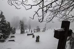 Time to sleep. (Denisa Colours of Decay) Tags: cemetery winter canon czphoto