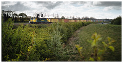 Loaded (Gingydadtog) Tags: class70 diesel freighttrain freightliner locomotive rugeley staffordshire train