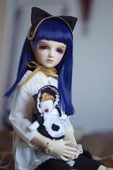 Blue (Muri Muri (Aridea)) Tags: volks vs liz oneoff bjd super dollfie ball jointed doll ボークス ワンオフ リズ スーパードルフィー