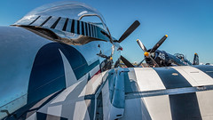 2017 Sun N Fun (lpd5358) Tags: sunnfun airshow florida lakeland klal lakelandlinderregionalairport airplane f4u4 quicksilver northamericanp51dmustang corsair vought koreanwarhero warbird p51d