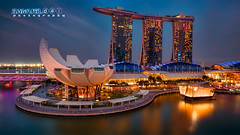 Singapore Art Science Museum (Samuel.Dai) Tags: marinabaysands mbs artsciencemuseum singaporeriver waterfront tourism touristattraction aerialphotography lowlightphotography cityscapephotography skyline skyscraper longexposurephotography sunset bluehour twilight dusk dji phantom3professional hdr samueldai