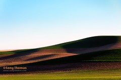 Palouse valley (Objects1000) Tags: palouse valley rollinghills landscape scenery green nature easternwashington patterns colors meadow hills vibrant scenic light colfax washington unitedstates us