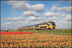 15-04-17 NS VIRM 8735, Hillegom (Julian de Bondt) Tags: ns nsr virm ic intercity tulips holland train trein bollenvelden hillegom