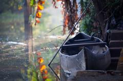 Shikara Reflections (chris watkins wales) Tags: india kerala backwaters shikara boat photography