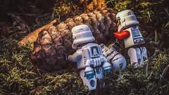 Helping friend (rasanenj) Tags: colorgels gels lego starwars toys flash outdoor toyssecretlife canon eos 50d tamron 90mm tamron90mm tamronsp90mmf2811macro