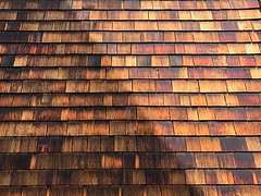 1 in Fifty Percent Rustic Shade (Robert Cowlishaw-Mertonian) Tags: 5050 fiftyfifty wall patterns shade shadows cedar design robertcowlishaw mertonian rustic wood siding lookingsideways ifone iphone iphone7plus texture pattern