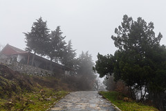 a path leading through the misty nature.. (ckollias) Tags: architecture beautyinnature buildingexterior builtstructure clearsky day grass growth nature naturephotography nopeople outdoors scenics sky thewayforward tree fog misty