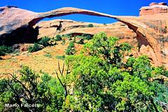 USA: Utah: Arches N.P.: Landscape Arch (mariofalcetti) Tags: unitedstates utah archesnationalpark landscape paesaggio arco arch rock roccia tree alberi