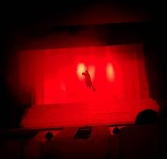 Jesus Christ Superstar: The Musical . #Day108 #JudasIscariot #lategram . (c) Marlene C. Francia 2017 . . . . . . . . .  . . . #HolyWeek #Nairobi #LentenSeason #Easter #KenyaNationalTheater #Judas #JesusChristSuperstar #SemanaSanta #Musical