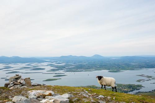 Ierland_BasvanOortHR-207