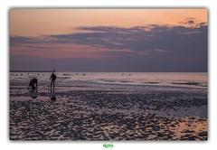 CE QUE JE VOIS QUAND JE VOIS LA VIE EN ROSE (4) (régisa) Tags: vie rose pink mer merdunord malo malolesbains dunkerque leffrinckoucke pêcheur fisherman sunset coucher soleil