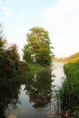Elstow Brook (Rob Felton) Tags: light sun mist reflection water sunrise bedford bedfordshire brook felton willington cardington robertfelton bedfordrivervalleypark elstowbrook