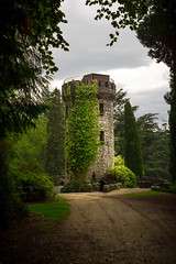 Fairy Tale (Eric Sturdivant) Tags: road trees ireland tower castle stone forest vines europe masonry eu ivy places powerscourt midevil ie wicklow fortress pathway locations countywicklow cowicklow ef2470f28lusm