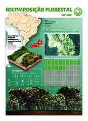ONG Iniciativa Verde (Marco Vergotti) Tags: brazil tree rio brasil de br rj janeiro campo terra iv rvore futebol ong planeta rurais assentamento desmatamento hectares reflorestamento iniciativaverde