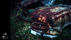 The Car Cemetery (geirkristiansen.net.) Tags: båstnäs d700 töcksfors ue västrafågelvik abandoned autumn bil bilkirkegård car carcemetery cemetery classic decay derelict exploring forest forfall forgotten forlatt forlattesteder fågelvik gammel glemt graveyard interestingplaces junk lost moody nature naturetakesback nikon nikond700 old picture planar5014zf portraitofaclassic ride rotten rust rusted rusten rusty secret skrot smashedup steder sverige sweden tapt trash tree trespassing urban urbanexploring urbex vegetation vehicle vestre vintage wheels woods wreck ødelagt