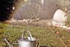 (omnscnt) Tags: summer colors grass canon fun 50mm rainbow sommer gieskanne wateringpot waer