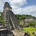 Il tempio più conosciuto di Tikal, il Templo I o Templo del Gran Jaguar