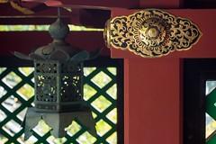 Kunozan 08-2013 (17) (yubokumin) Tags: 2004 japan takumar m42 shrines smc manualfocus 502 carlzeissjena shizuokaken 35mmf24 kunozan shizuokashi mechanicallens