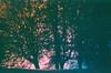 к о г д а н е б о л ь н о (neamoscou) Tags: art classic love kunst retro τέχνη 写真 عکاسی هنر taide 藝術 فن 影相 芸術 예술 古着 ศิลปะ छायाचित्र कला 사진술 ফটোগ্রাফি صوير শিল্প การถ่ายภาพ ஒளிப்படவியல் ხელოვნება ਕਲਾ