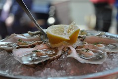 Oysters on a Half Shell (sfPhotocraft) Tags: ice lemon provincetown capecod seafood oysters appetizer ptown halfshell