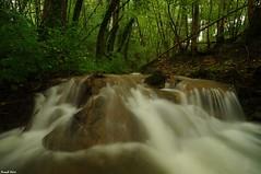 Ressaut de Tuf sur le ruisseau du Creux Lague - Blégny (francky25) Tags: les de du jura le sur franchecomté bains tuf ruisseau salins creux lague ressaut blégny