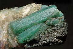 beryl var. emerald, quartz, mica var. biotite (gry60) Tags: brazil bahia emerald biotite meraude campoformosoultramaficcomplex socotemeralddeposit