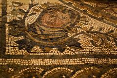 Roman mosaics, detail (Fernando Two Two) Tags: museum museu roman antique mosaic mosaico romano latin museo archeology romanempire tarragona mosaik tarraco arqueologia arqueologa rom antigedad imperioromano arqueolgic mnat imperirom