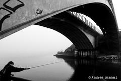 Copyright  Andrea Danani (Fotocineclub Mantova) Tags: mantova nebbia lungolago ottobre2013 vision:mountain=0847 lucagiubertoni vision:outdoor=0825 vision:sky=0532