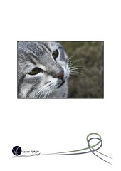 """47. Sergi <a style=""""margin-left:10px; font-size:0.8em;"""" href=""""http://www.flickr.com/photos/110347743@N05/11462668276/"""" target=""""_blank"""">@flickr</a>"""
