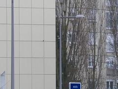 Vandoeuvre 54500 (alainalele) Tags: france internet creative commons council housing bienvenue et lorraine 54 licence banlieue moselle presse bloggeur meurthe paternit alainalele chiffrisme lamauvida