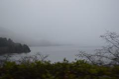 Dec 22/13 - The Drive up (Primespot Photography) Tags: bc britishcolumbia vancouverisland tofino