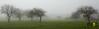 nebbia mattutina a Borore (Luca eskimo) Tags: sardegna wild green nature fog sardinia natura nebbia borore