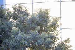 20140227-_DSC1351 (Fomal Haut) Tags: kyoto  williamkentridge    therefusaloftime parasophia voicegallery