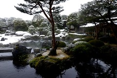 足立美術館 Adachi Museum of Art (Danny Oei) Tags: old trees green japan forest garden temple traditional famous sightseeing bonsai 日本 teaceremony snowing hotspring japanesestyle 廣島 嚴島神社 宮島 heavysnow beautifulplaces top3 世界文化遺產 足立美術館 由志園 鳥取市 日本三大名園 中國地區 chūgokuregion