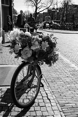 Sensory triggers (weerwolfje) Tags: bnw odc sensory triggers streetphotography street bicycle