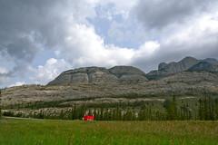 Yellowhead Hwy., Jasper National Park, Canada (leo_li's Photography) Tags: parcnationaljasper yellowheadhighway yellowheadhwy jaspernationalpark alberta canada 加拿大 亞伯達省 canadianrockymountains rockymountains 洛磯山脈 亞伯達 艾伯塔省 艾伯塔