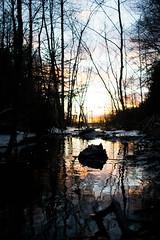 Emsalö (EmilVikström) Tags: water rocks woods wildlife forest cool clouds mood moody tone tones explore inpsire travel porvoo visitporvoo finland visitfinland emsalö emäsalo canon nikon