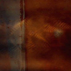 Kober & Gossen (melcolliephoto) Tags: time pattern ocean fern woods exposure multiple abstract copper rusted cornwall