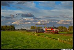 Captrain 1619, Rijssen 28-08-2016 (Henk Zwoferink) Tags: rijssen overijssel nederland nl raillogix henk zwoferink captrain nsb bm73 73015 1619
