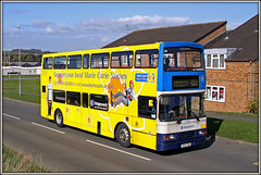 After the piece of junk. (Jason 87030) Tags: bus daventry d2 admiralsway southbrook estate sky sunny april 2016 canon 50d eos 16694 r694dnh stagecoach doubledecker cancer bright color colour yellow mellow daffs daffodil charity roadside shot northants northamptonshire midlands