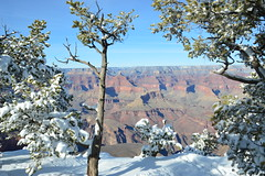 Grand Canyon 36 (Krasivaya Liza) Tags: grandcanyon grand canyon national park canyons nature natural wonder az arizona holiday christmas 2016 snowy winter cliffs cliffside edgeofcliff