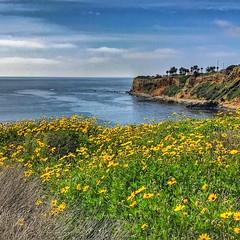 Spring Time in Los Angeles - Palos Verdes (shinnygogo) Tags: losangeles spring palosverdes waterfront ocean hdr california southbay socal
